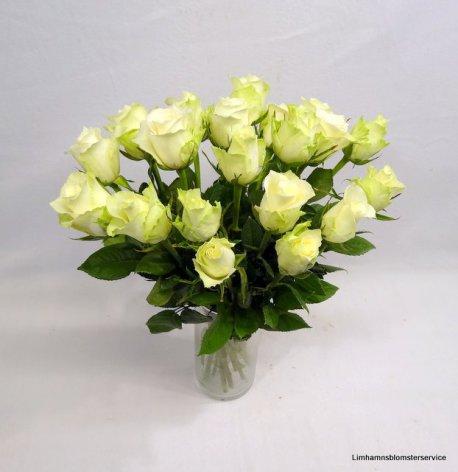 Bukett med vita rosor