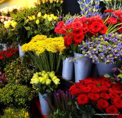 Floristen skapar av dom finaste blomster för dagen